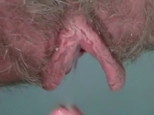girls nude hairy pussys