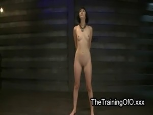 bizarre anal insertions solo women videos