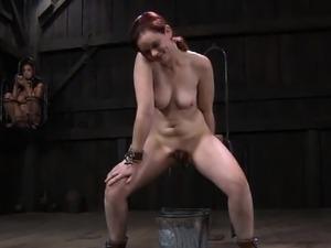 free bdsm shemale sex movies