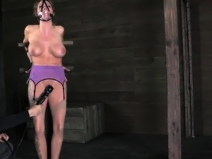 bdsm ring clothespins pussy