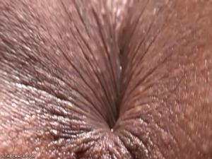 aged cunts anal free video