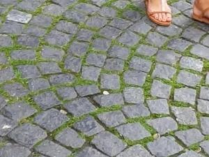 teen girls bare feet