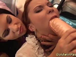 free crazy sex videos