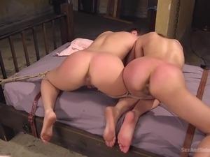 bdsm tortured pussy tube